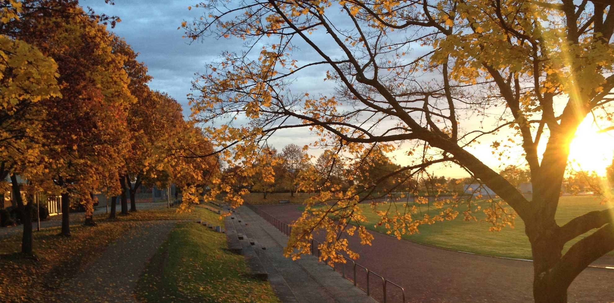 Sonnenaufgang über Sportplatz
